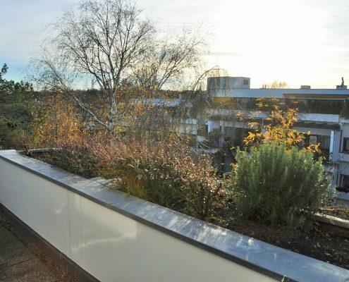 1190 Terrassenwohnung Aussicht