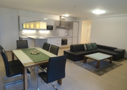 partly furnished 3 bedroom apartment